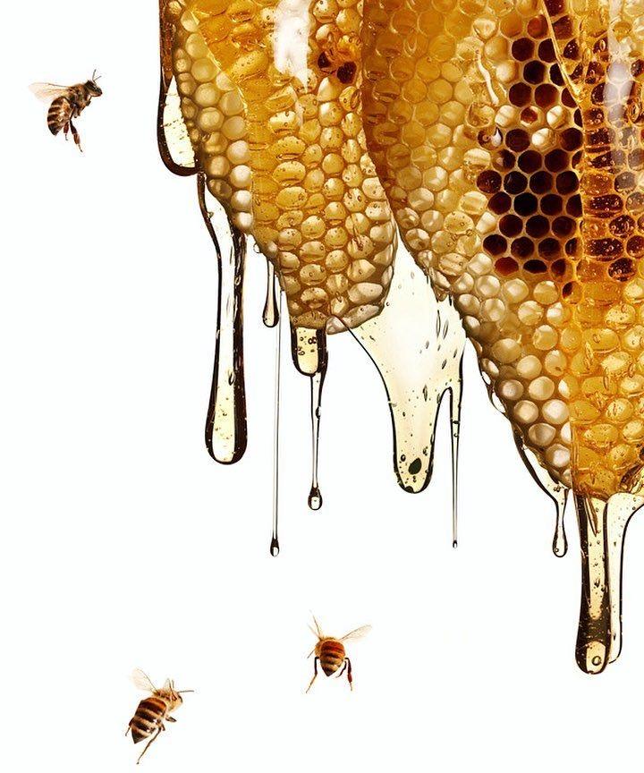 Чем лучше заменить сахар: мед